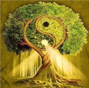 teremtő 300x298 - Most! Különleges teremtő erők vannak jelen, amelyet megújulás, pozitív anyagi változás jellemez!