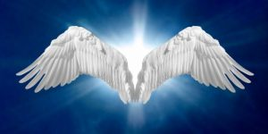 magasba 300x150 - Angyali üzeneted szombat éjszakára: Eljött a Te időd, készen állsz a magasba emelkedni!