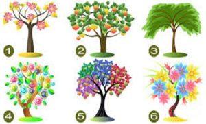 fája 300x181 - Válassz egyet az élet 6 fája közül és tudd meg mit üzen számodra!
