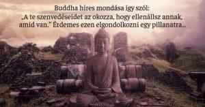buddhista 300x157 - Vannak dolgok, amiket meg kell érteni az életről, ezt a legtöbben nem tudják