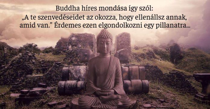 buddhista - Vannak dolgok, amiket meg kell érteni az életről, ezt a legtöbben nem tudják